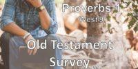 Prov1-Old-Test-Survey-JULY2017-Pre-serv-slide